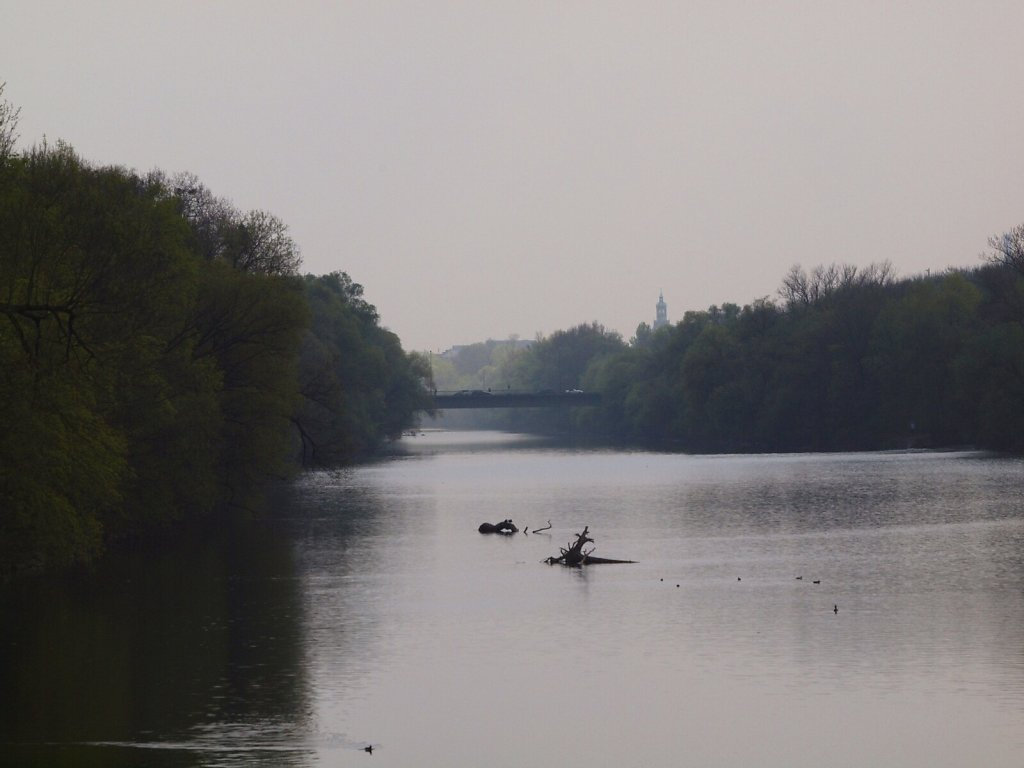 The Isar on an Early Spring Day